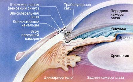 Глаукома описание